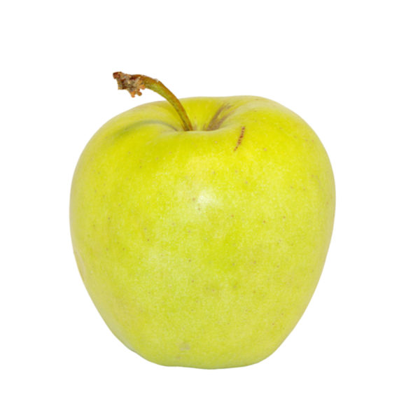 Apple gd